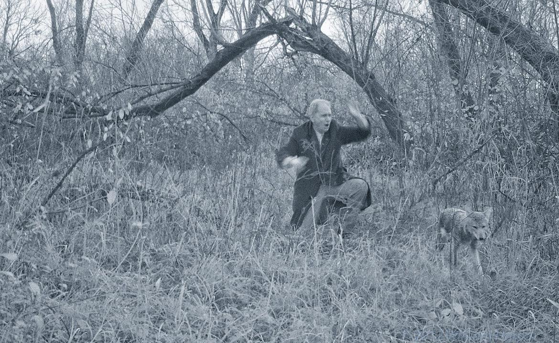 trail cam image man wolf