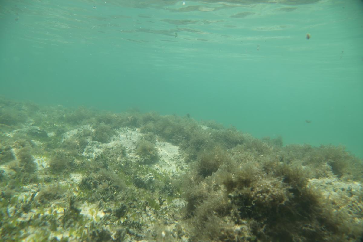 kronan shipwreck baltic sea