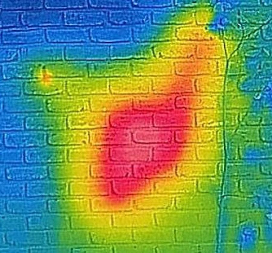 Infrared-Hive-e1538674529418-56214