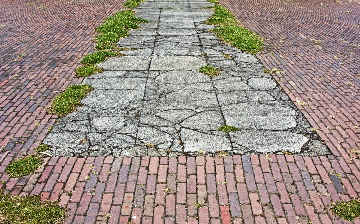 sidewalk weeds growing
