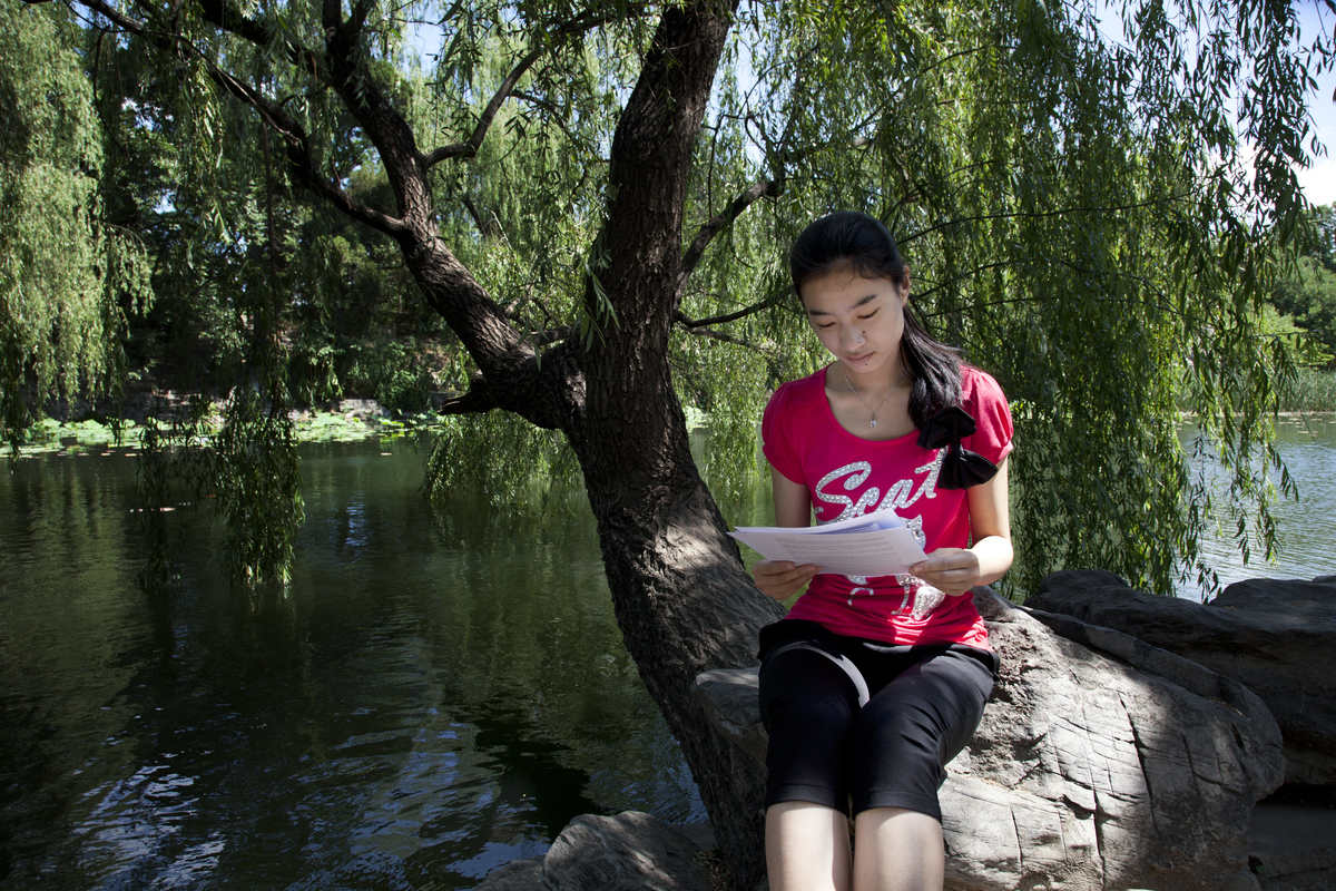Student studies her report under a weeping willow tree