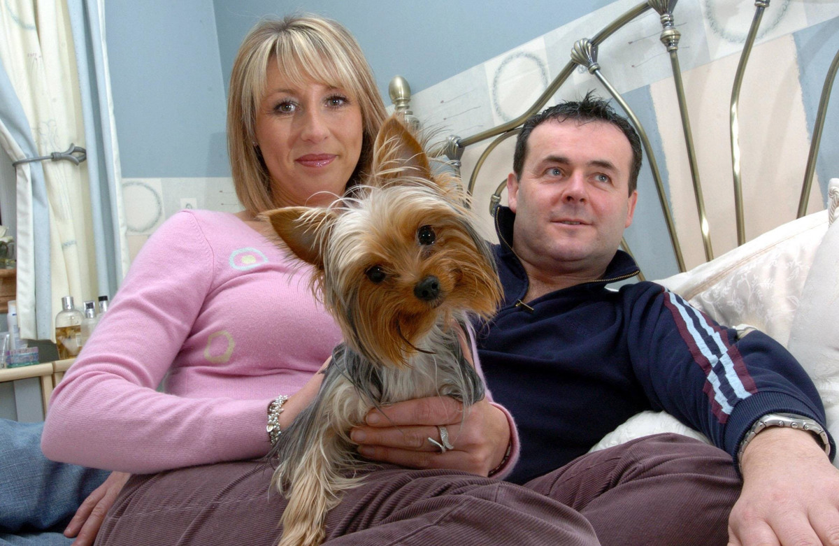 A Yorkshire Terrier lies with her parents in bed.