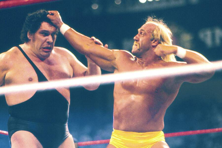 andre the giant fighting hulk hogan