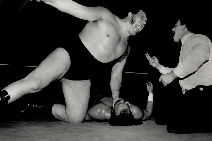 andre the giant while wrestling