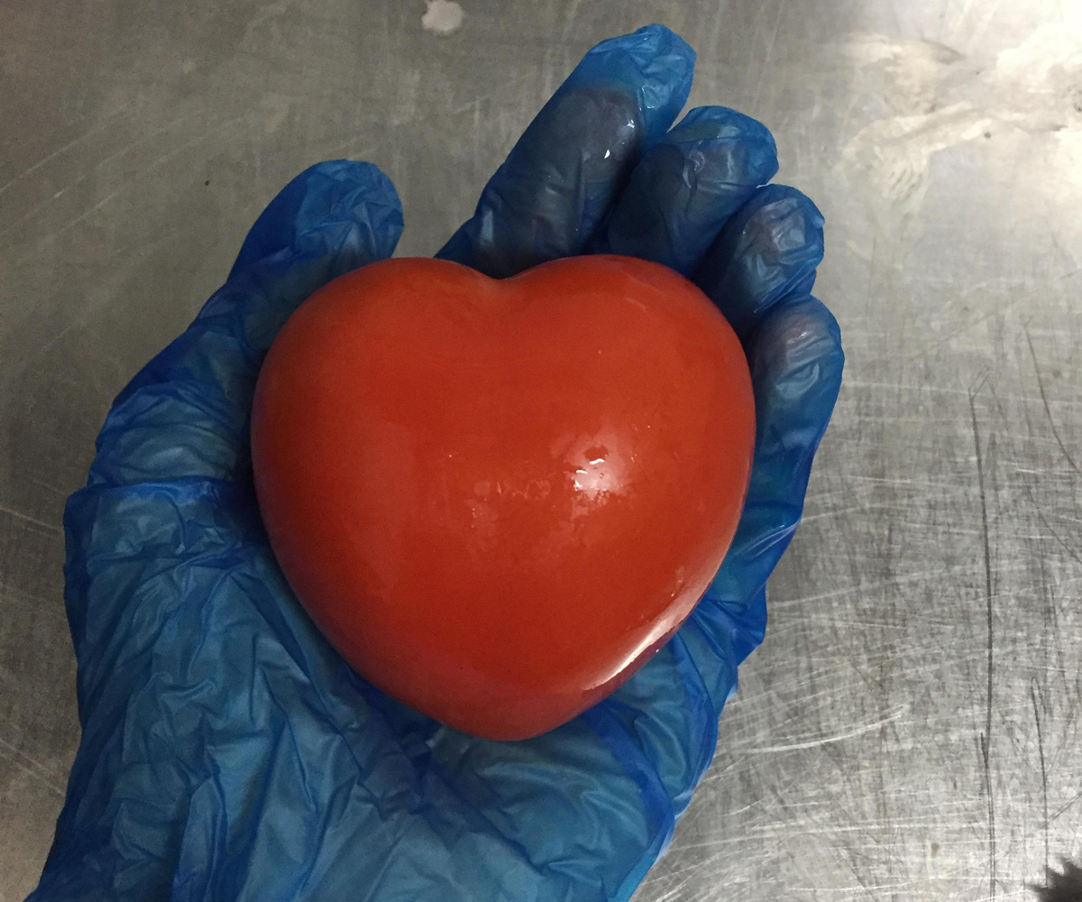 Worker wearing gloves holds a heart-shaped tomato.