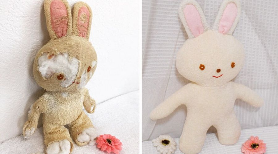 a bunny before and after