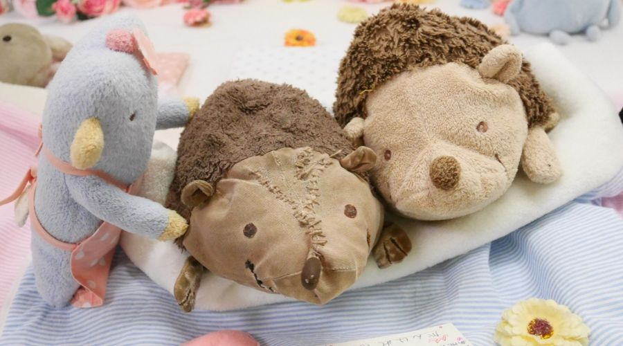 two stuffed animal hedgehog