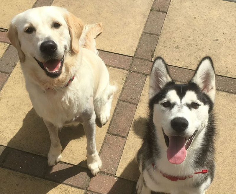 Lola and Skylar sit outside together.