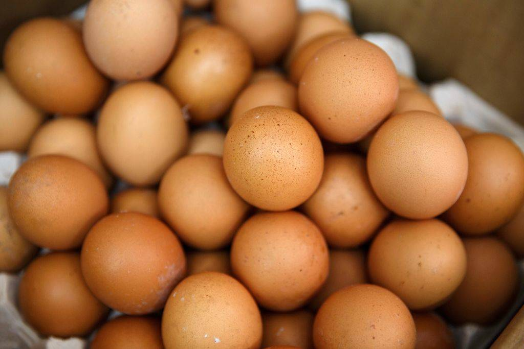 brown eggs -830595684