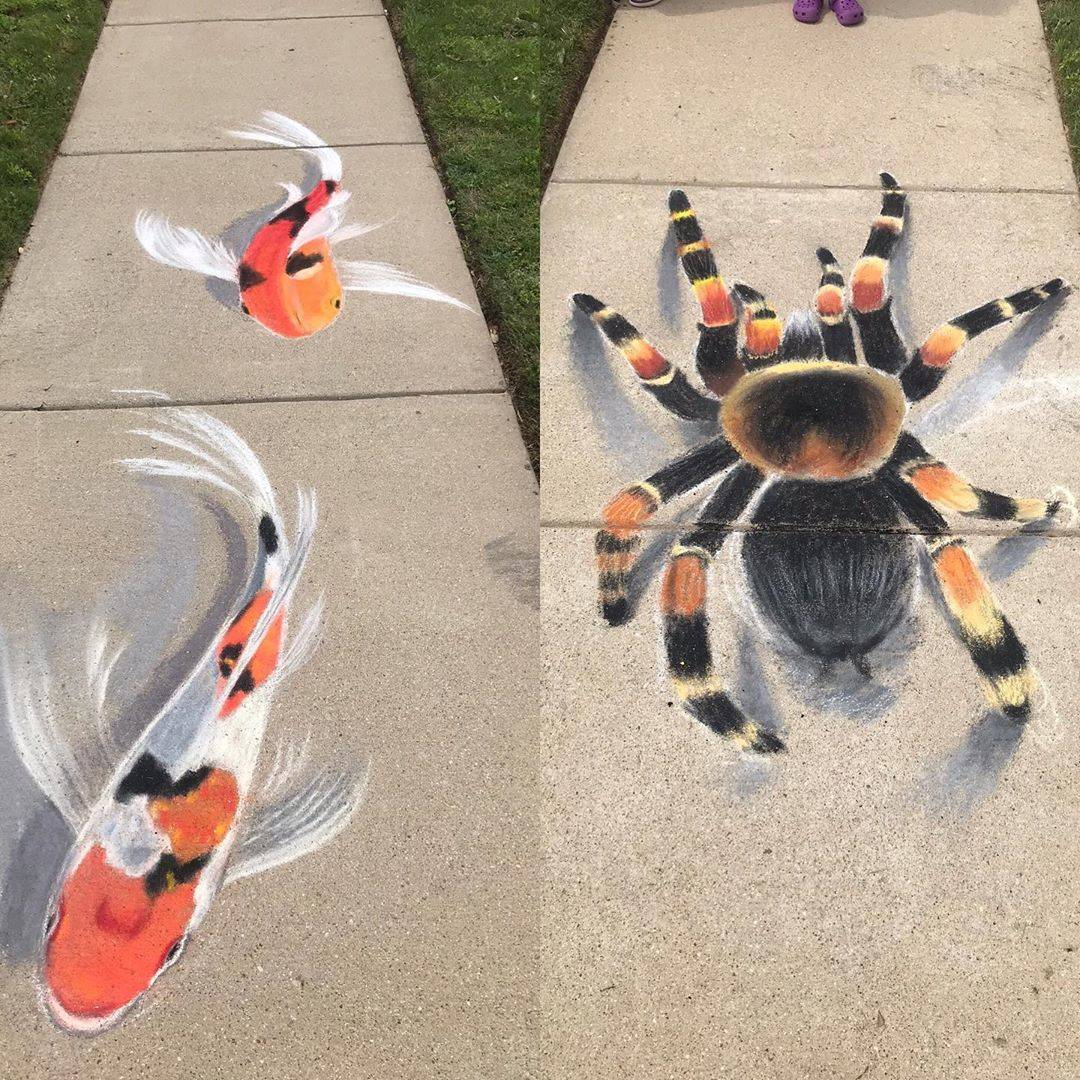spider and fish chalk