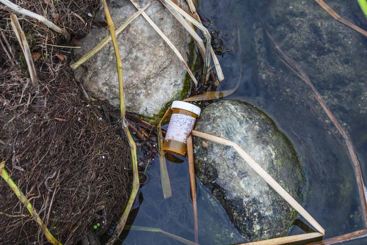 An empty, discarded prescription bottle lies in a river.