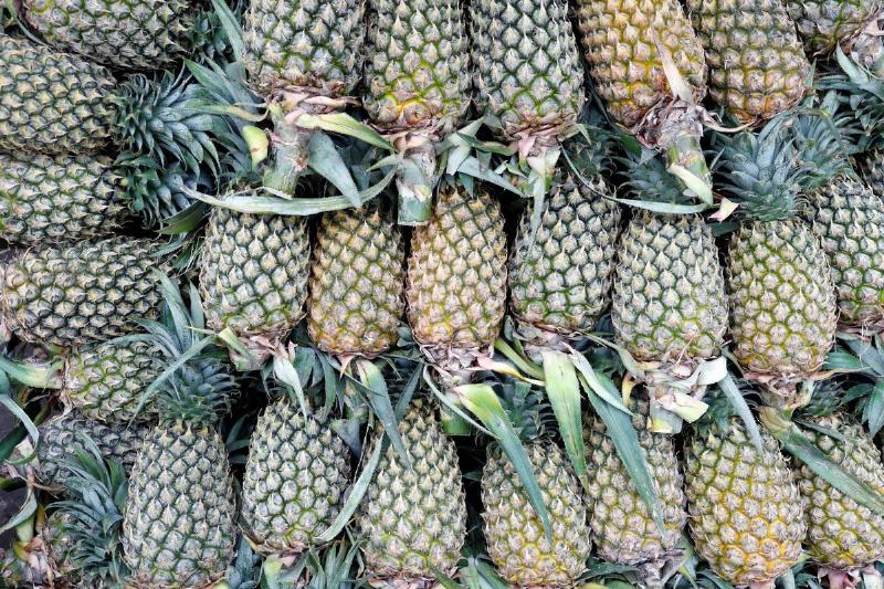 Whole pineapples for sale lie in a pile.