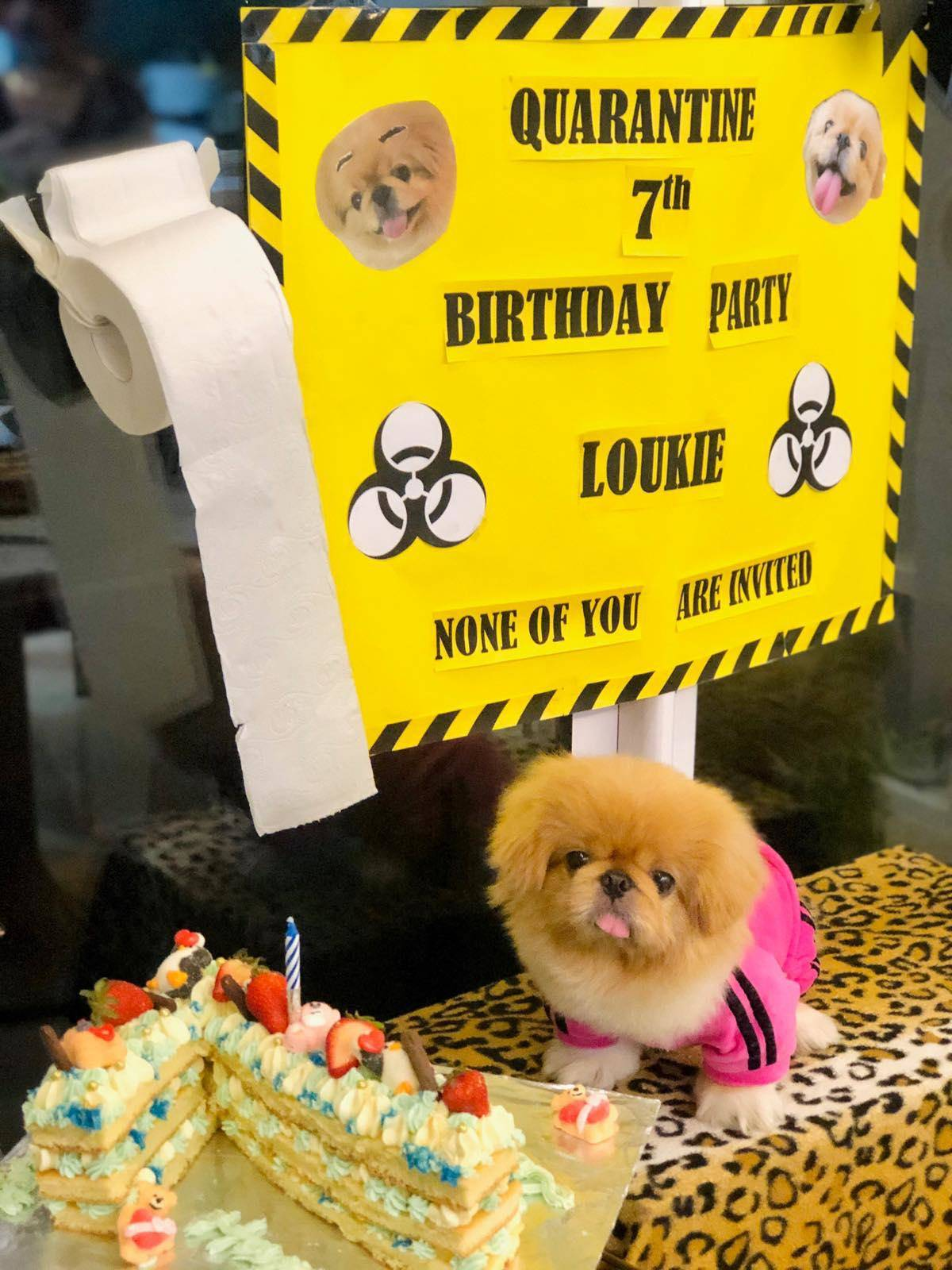 A dog sits next to a cake underneath a sign that says,