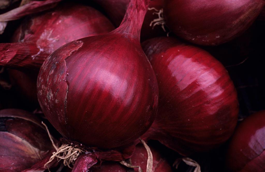red-onion-diabetics-629374399