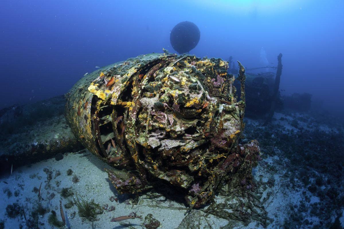 The wreck of the B24 bomber in the Adriatic Sea is seen.