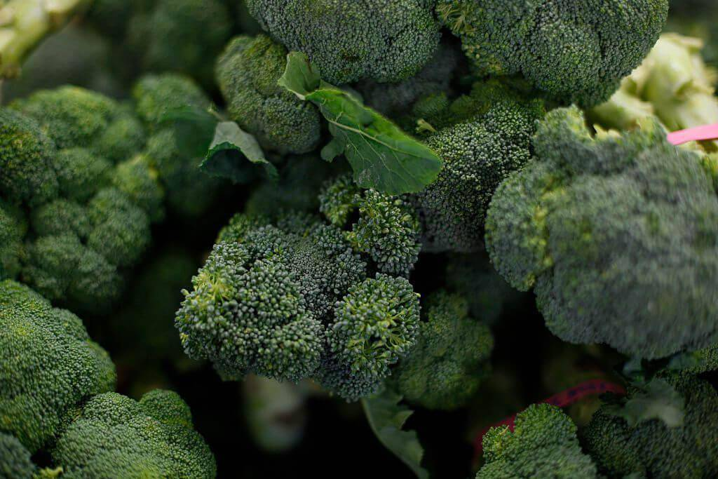 broccoli-87601-38913