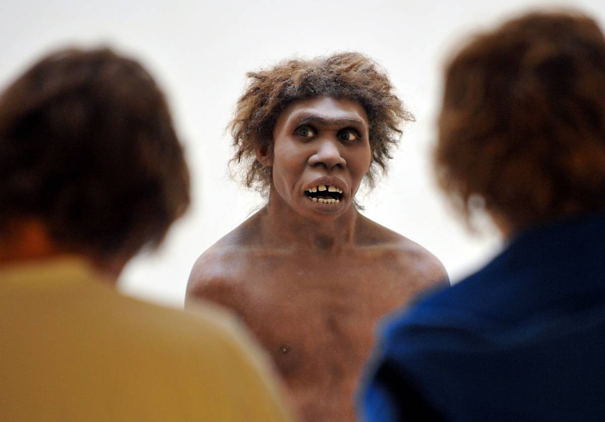 Museum visitors look at a model that represents a Neanderthal man.