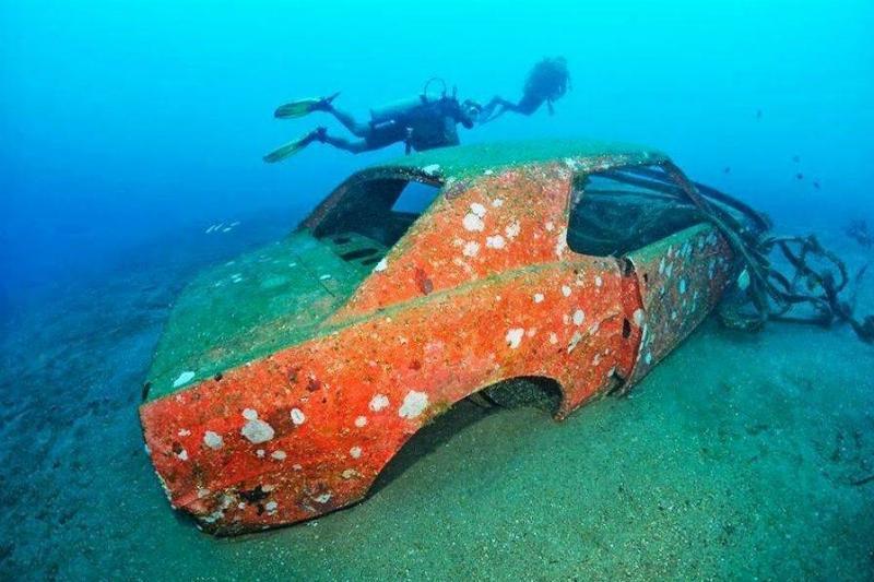 mustang-underwater